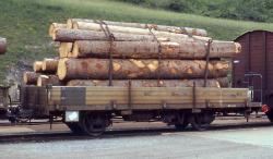 RhB Kk-w 7340 Niederbordwagen mit Holzklapprungen