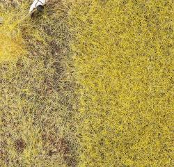 PREMIUM Ground cover fibres, Straw, 6 mm, 30 g