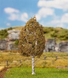 1 PREMIUM Birch tree, small