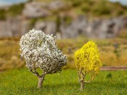 1 PREMIUM Blackthorn tree + 1 PREMIUM Forsythia