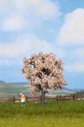 Obstbaum blühend