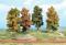 Heki 2001 4 Herbstbäume 18 cm
