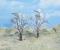 Heki 2106 2 Winterbäume 14 cm