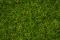 Noch 07076 Grasmischung Sommerwiese 100g