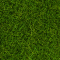 Noch 07093 Wildgras maigrün 100 g