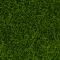 Noch 07094 Wildgras dunkelgrün 100 g