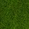 Noch 07098 Wildgras XL maigrün 80 g