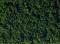Noch 07320 Classic-Flock dunkelgrün 30 g